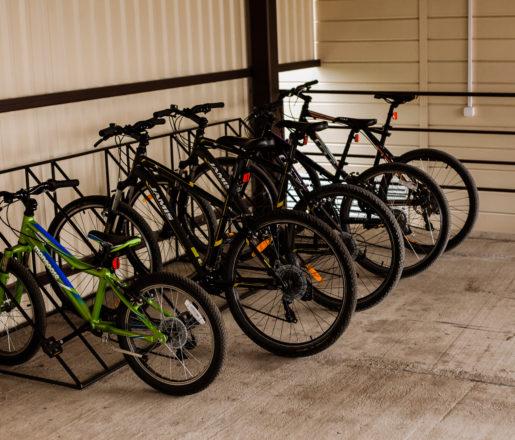 Прокат велосипедов в Алтай Green