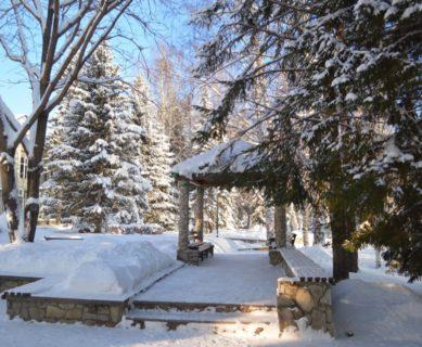 Санаторий Алтай-West в Белокурихе отдых в декабре